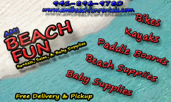 AMI Beach Fun Rentals - home page opens in new window
