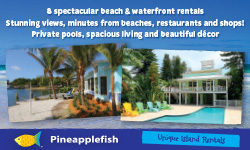 Pineapple Fish homes rentals - home page opens in new window