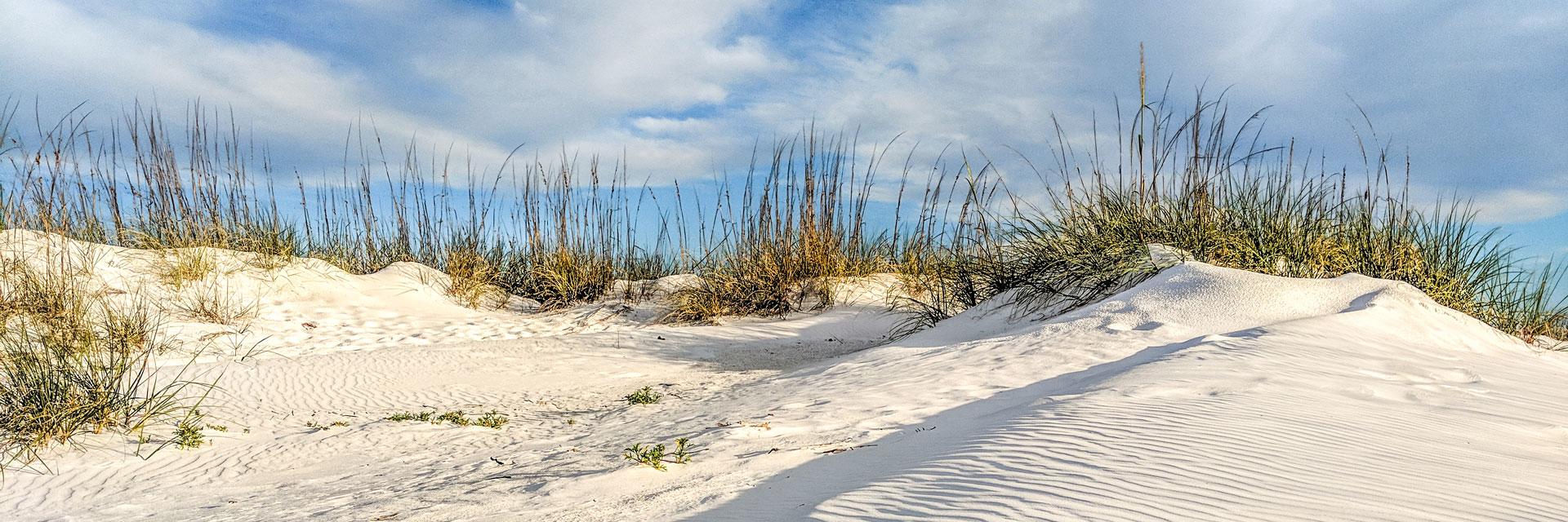 Anna Maria Island sand dunes