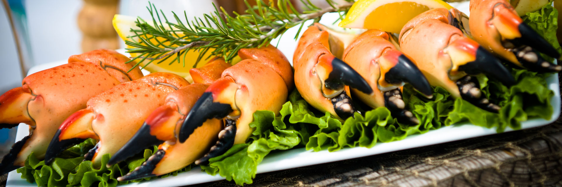 Eight stone crab claws on a plate.